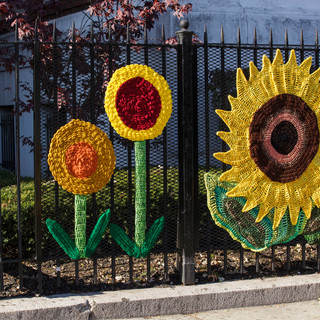 Sunflowers-  crochet at Concourse House