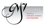 GNSI_Member_Badge_Black.jpg