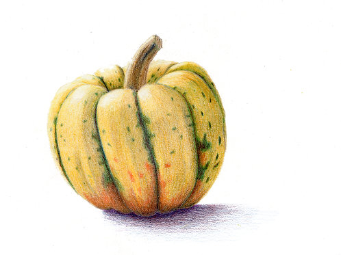 Skill Share: Color theory and colored pencils