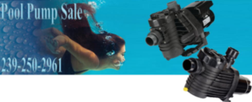 single speed pool pumps and variable speed pool pumps│Beach Pools Inc