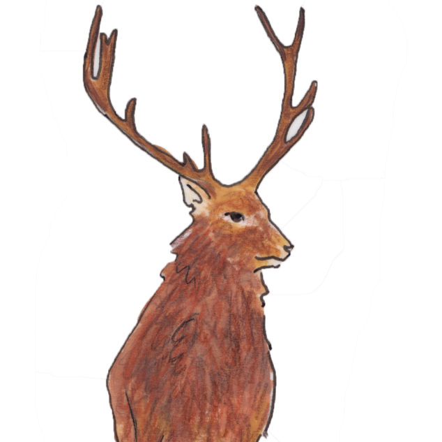 Larry the Stag