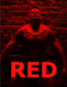 CFS 28 RED.jpg