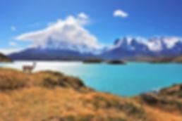 Viagio di nozze Cile