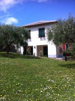 casa tra gli ulivi