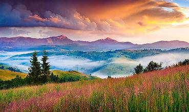 nature02.jpg