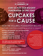 Cupcakes for a cause poster (2).jpg
