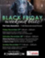 Black Friday Blitz.jpg