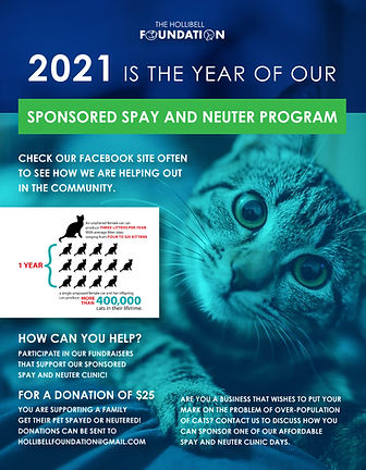 spay and neuter program-01 copy.jpg