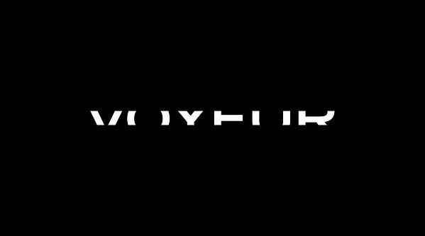 various_logos_2018_voyeur_02.jpg