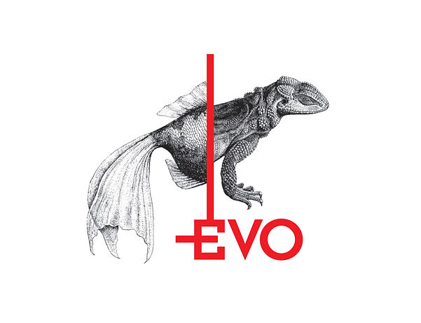 various_logos_2018_Evo_02.jpg