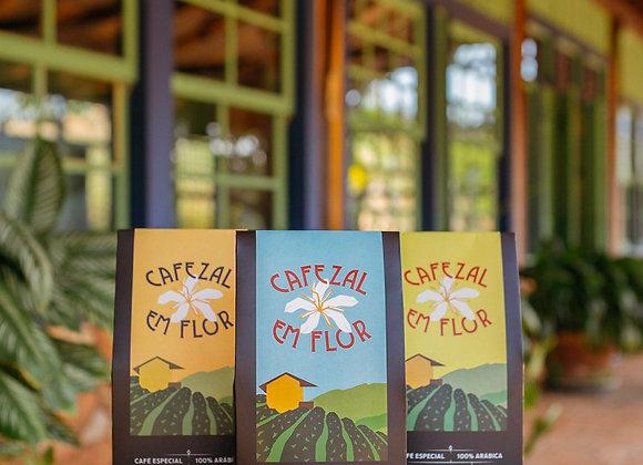 Cafezal em Flor - Turismo e   Cafés Especiais