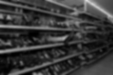 Thrift Store I 2014_lowquality.jpg