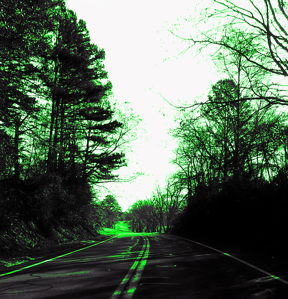 """""""Left"""" was shot on a winding road in the North Georgia Mountains. I liked the green up there so much that I decided to make the entire image green."""