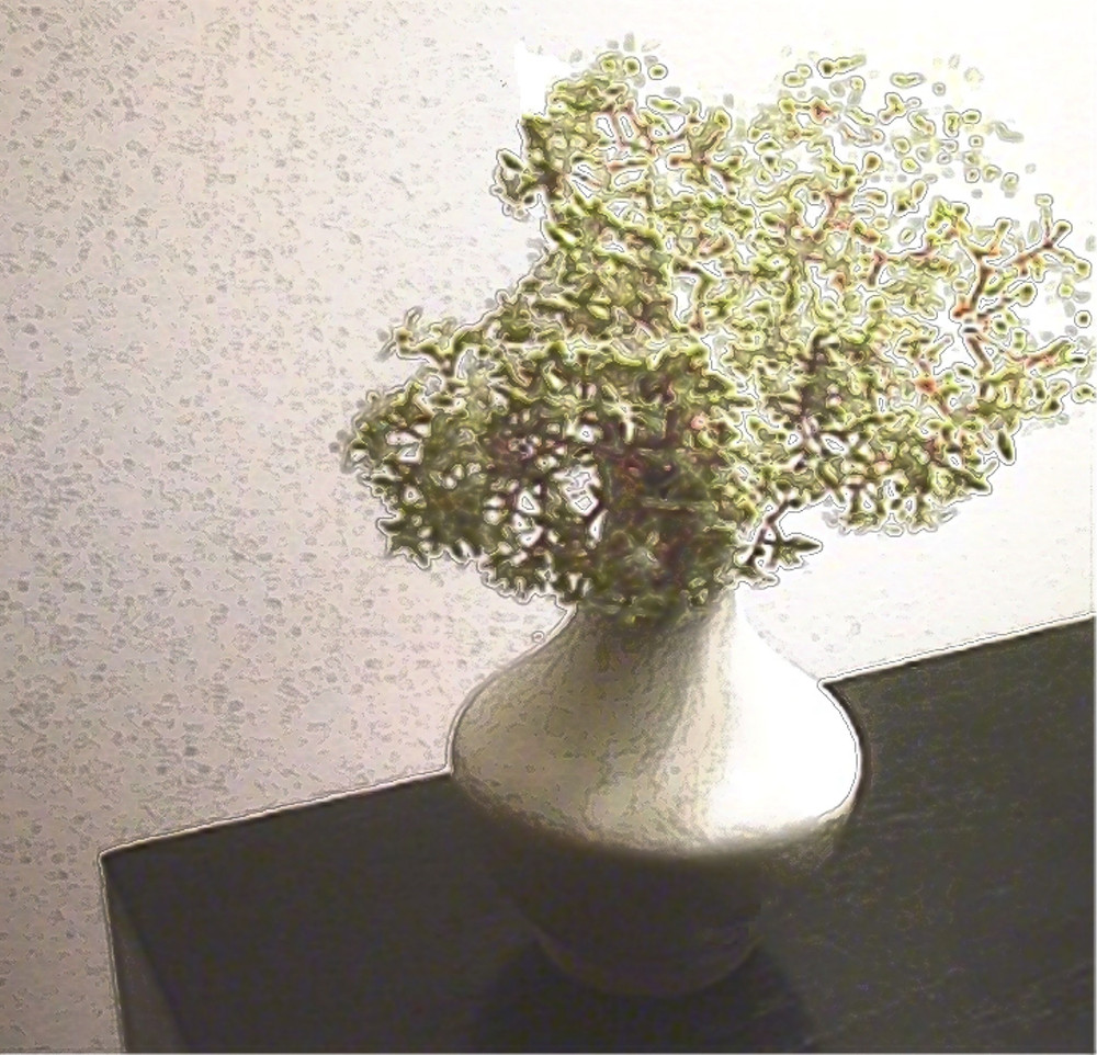 """""""Tiny Flowers"""" was shot in 1990 in my Greenwich Village apartment with the only available light from a nearby lamp."""