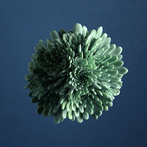 Suspended Succulents - Explorations of procedural modelling in Houdini