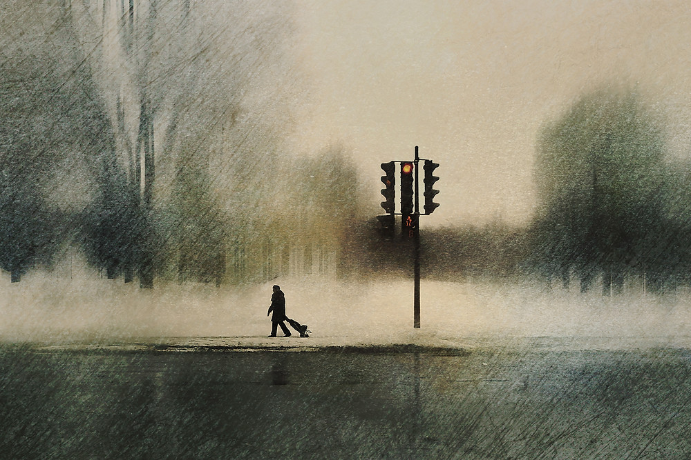 """Le Parc Des Braves  - On a very cold February day, an elderly person walks through a windy deserted park. Translated from French """"The Park of The Braves"""" depicts our need to perform daily tasks despite our age and circumstances."""
