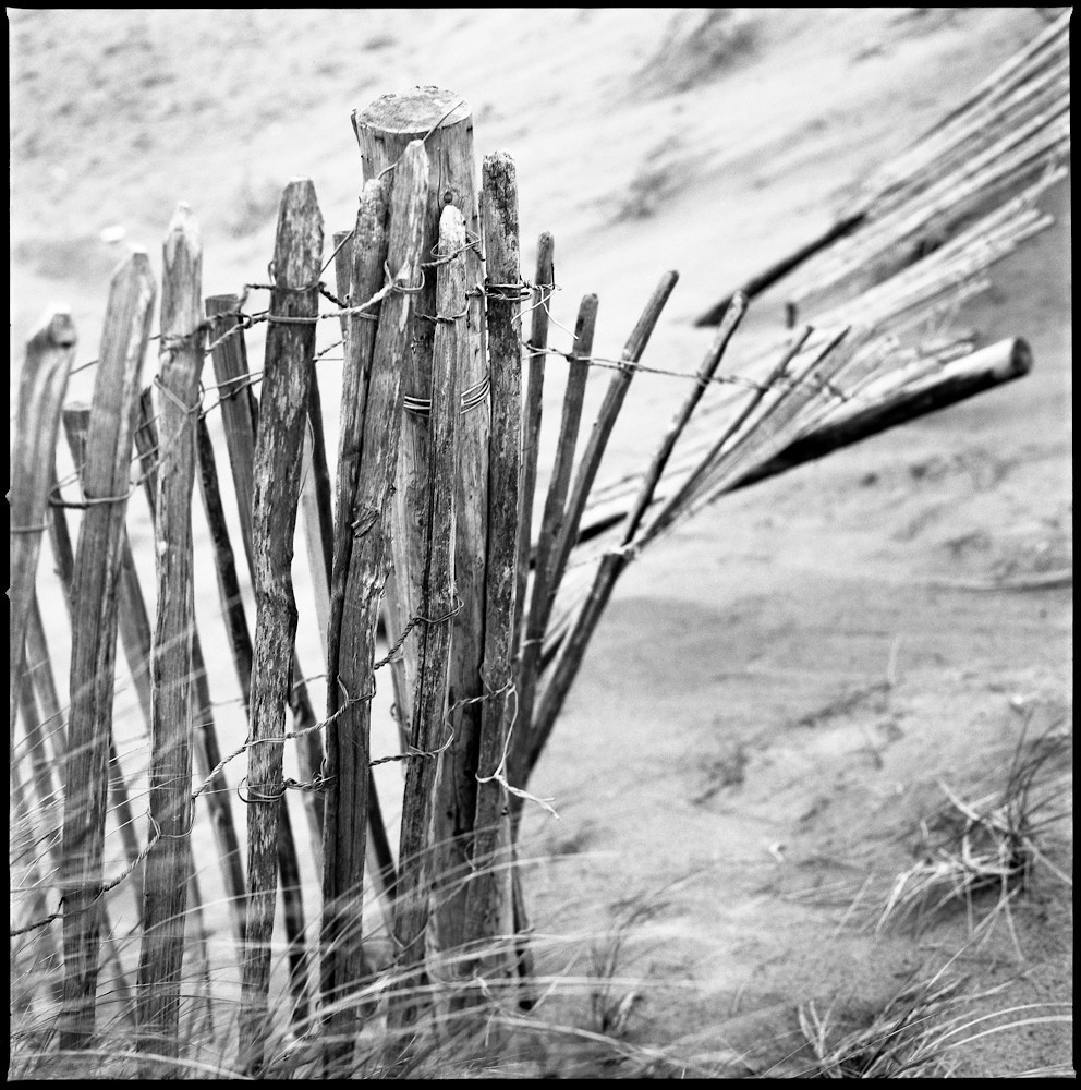 Fence I, Dawlish Warren, Devon Photography by Paul Cooklin