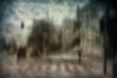 Castonguay_Daniel_Gentle_storm.jpg