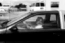 Lady Driver 2017_lowquality.jpg
