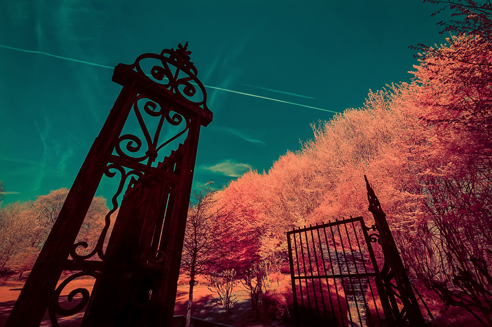 The dungeon of candyfloss   Let's have a walk and pass through this old portal . This path leads to the dungeon of candyfloss. Discover its garden made of candyfloss trees but beware of the witch that lives in there !   Shot with IR590nm Modified EOS 5D MKII - Ef 17-40 mm f/4