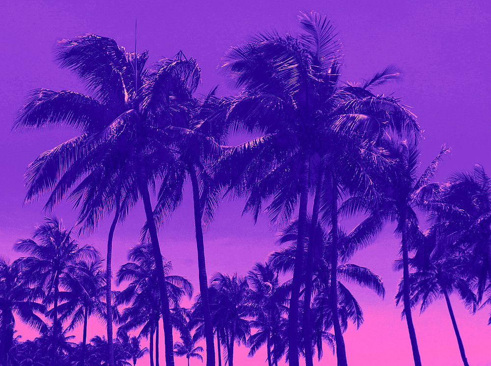"""""""Purp"""" is a digitally-manipulated photograph of Florida's palm trees. I thought the neon purple overtones would put the beholder in the mind of a retro Miami Vice world."""
