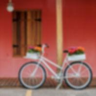 White Bicycle.jpg