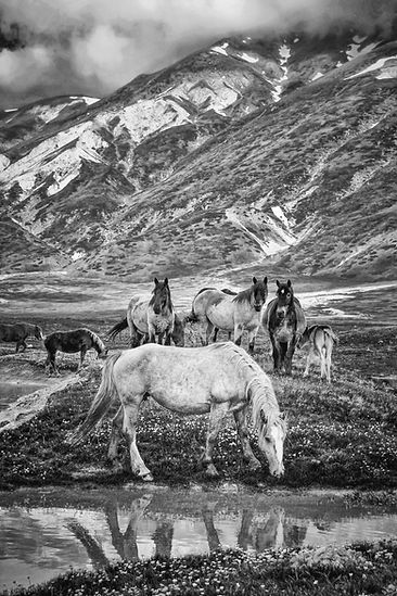 A.Passerini_Little Tibet (5)_e.jpg