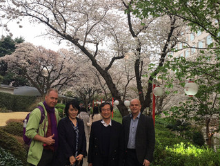 Tokyo Kindergarten group.... things are starting to Blossom in Tokyo !!