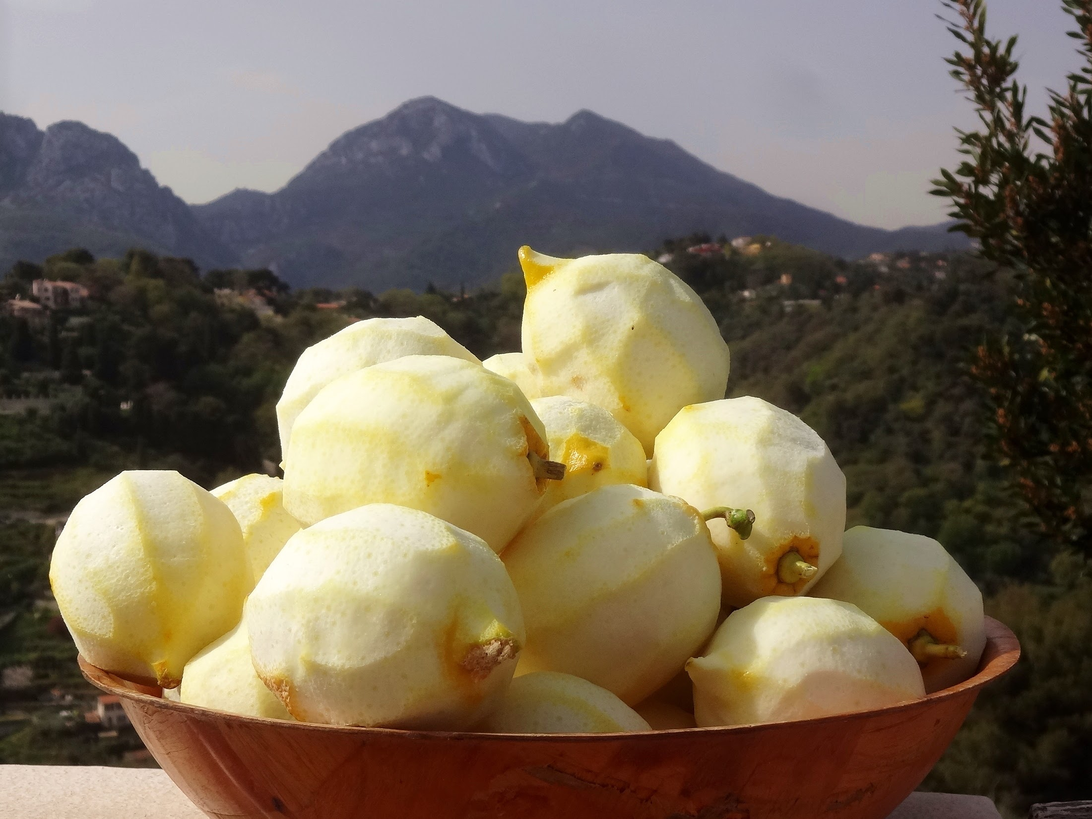 Lemons of Menton without zests