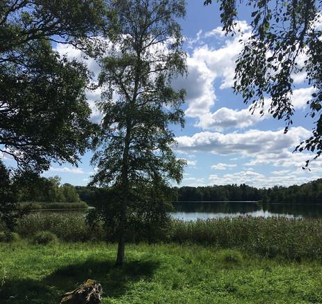 Vandrarhem Skara sommarland.jpg
