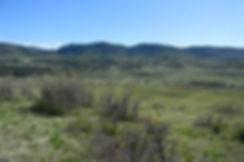 vacant land.jpg