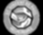 logo-stvincent-bw.png