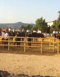 Pista equestre Borore