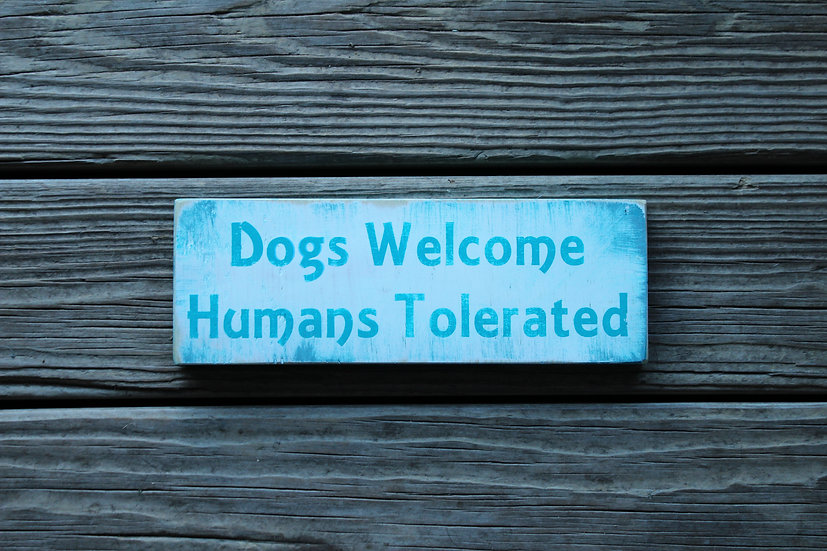 Dogs Welcome Turquoise Wooden Plaque