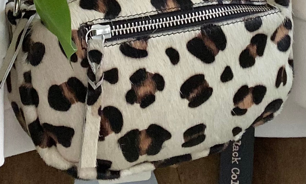 Black Colour Leo crossbody box bag