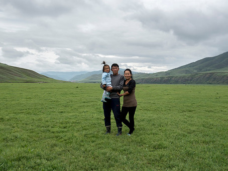 The importance of Mongolia's boreal forests