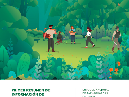 Argentina: well positioned to access results-based payments after completing the REDD+ readiness