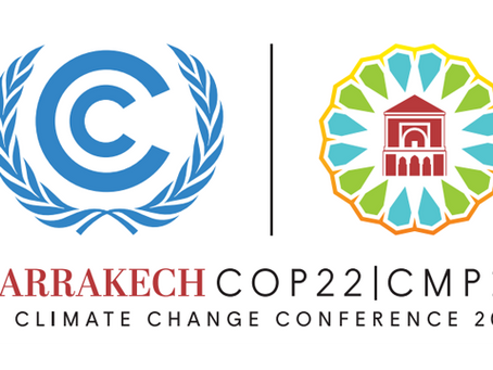 Visit our COP22 Forest Event Hub!