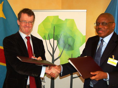 US$ 200 million agreement between CAFI and DRC set to prevent tree loss