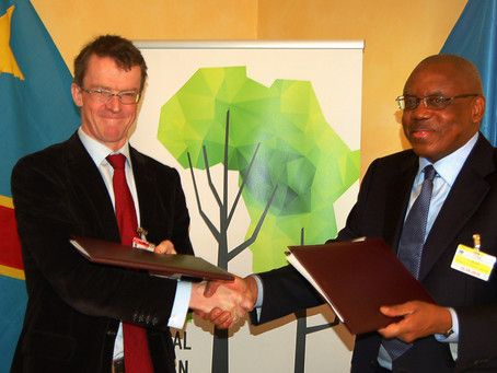 US$ 200 million agreement between CAFI and DRC set to prevent tree loss and ensure sustainable devel