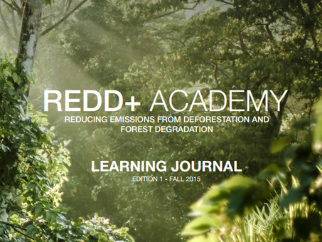 Call for contributions: Revision of REDD+ Academy Learning Journals