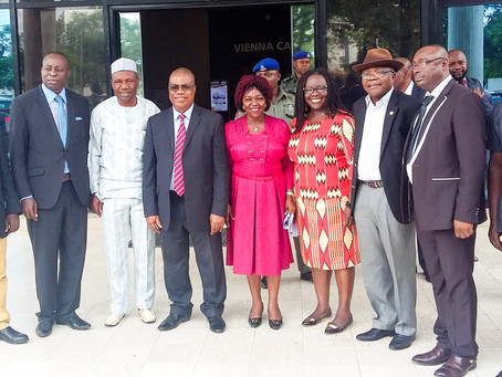 REDD+ process receives a boost during the National Council on Environment high level meeting in Nige