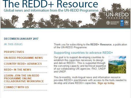 New issue of the REDD+ Resource now available!