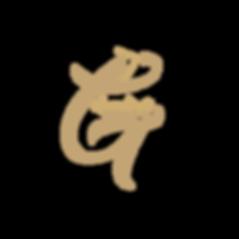 letter logo design graphic design studio