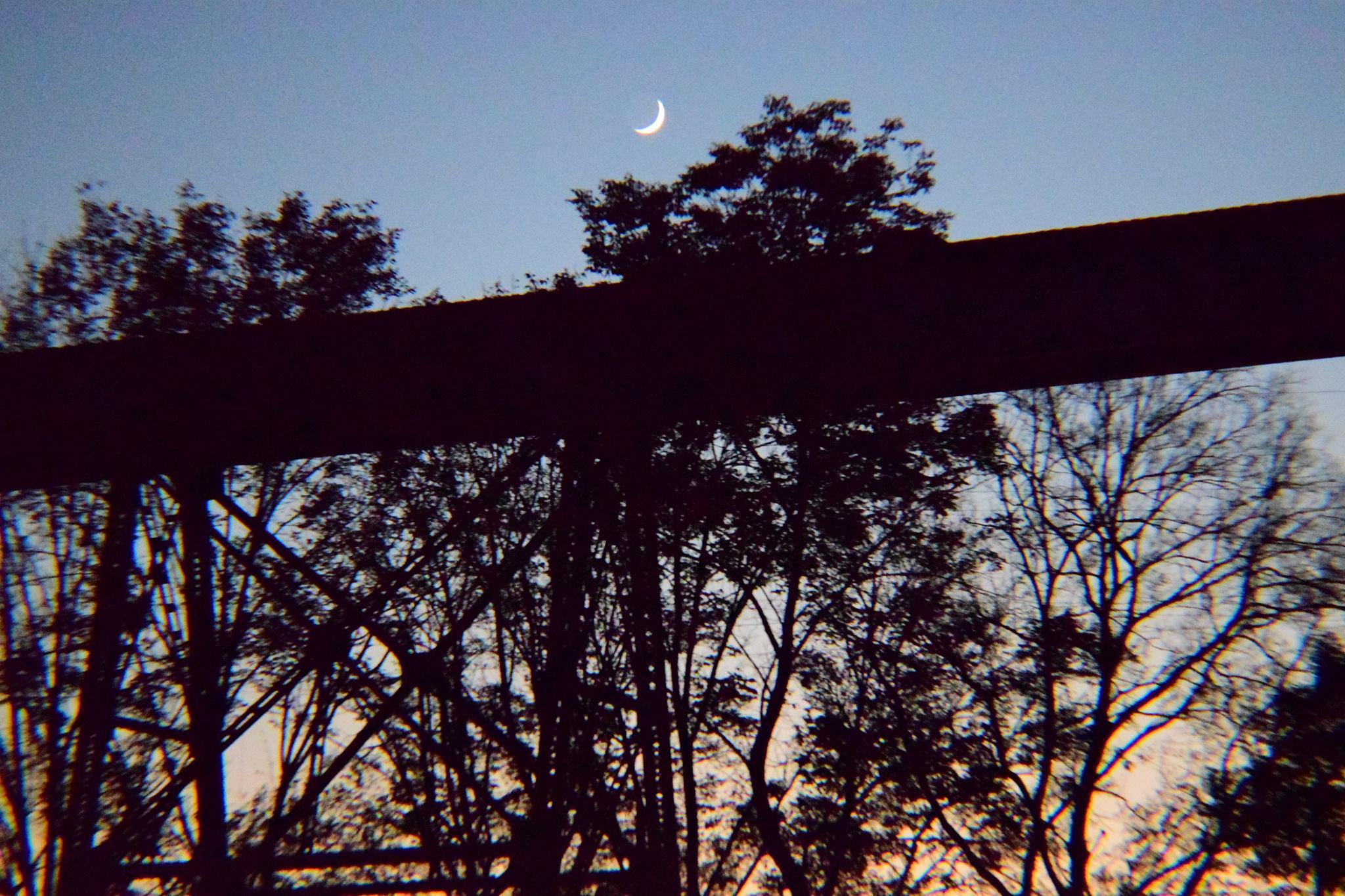 moonovertraintrakcks.jpg