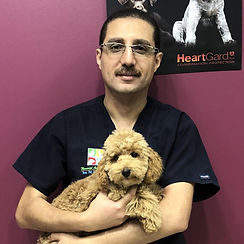 Dr Beiman Banoub