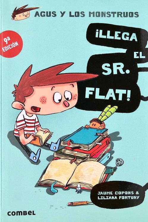 Llega el Sr. Flat