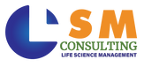 LSM_Consulting_Logo_2020.png