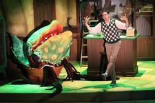 Little Shop of Horrors (Gretna Theatre)