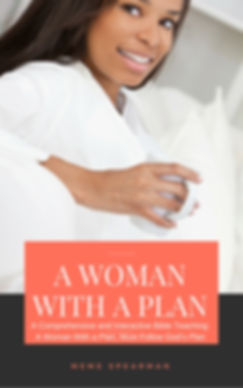 a woman with a plan.jpg